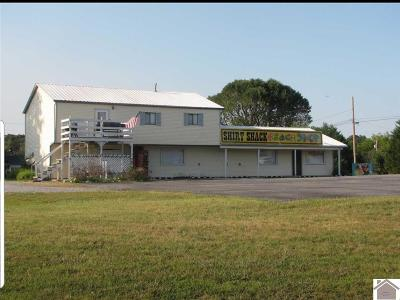 Grand Rivers KY Commercial For Sale: $239,000