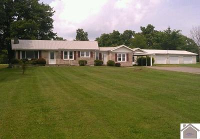 Marshall County Single Family Home For Sale: 3973 Us Highway 68 East