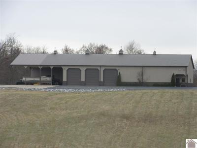 McCracken County Farm For Sale: 1801-1901 Gholson Road