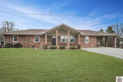 Calloway County Single Family Home For Sale: 447 Peeler Rd