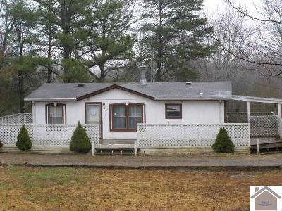 Calloway County Manufactured Home For Sale: 230 Mazurek Circle