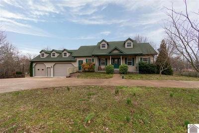 Gilbertsville Single Family Home For Sale: 2661 Little Bear Hwy