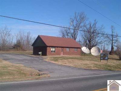 Ballard County Commercial For Sale: 930 Wickliffe Road