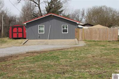 McCracken County Single Family Home For Sale: 425 Flora Avenue