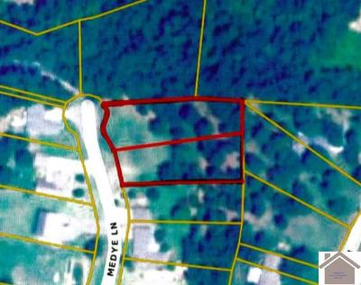 Calloway County Residential Lots & Land For Sale: Lots 10 & 11 Medye Lane