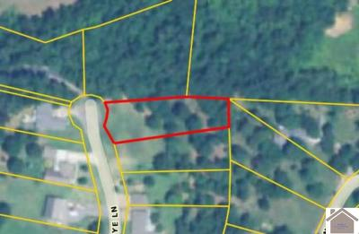 Calloway County Residential Lots & Land For Sale: Lot 10 Medye Lane
