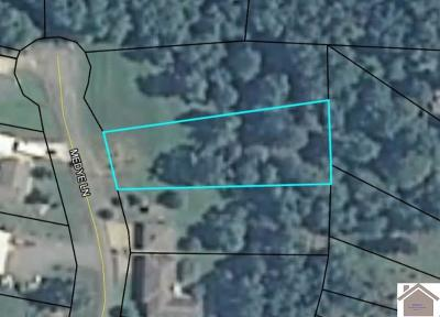Calloway County Residential Lots & Land For Sale: Lot 11 Medye Lane