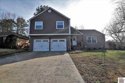 McCracken County Single Family Home For Sale: 270 Andromeda Drive