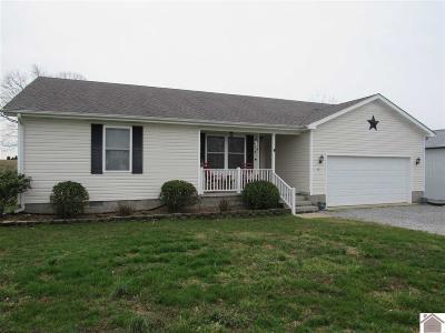 Cadiz Single Family Home For Sale: 35 Adams Mill Road