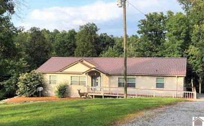 Gilbertsville KY Manufactured Home For Sale: $279,900