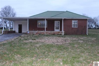 Calvert City Single Family Home For Sale: 9240 Us Highway 68w