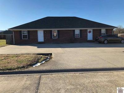 Calloway County Multi Family Home For Sale: 11/17 Vassar Dr