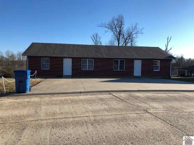 Calloway County Multi Family Home For Sale: 69/73 Princeton Dr