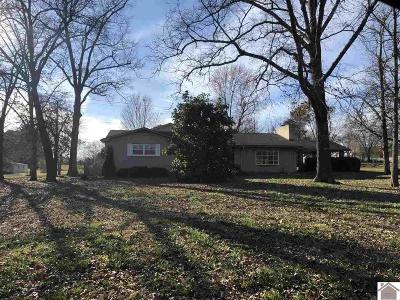 Benton Single Family Home For Sale: 106 Merrywood Drive