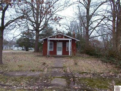 Paducah Single Family Home For Sale: 2104 Harrison Street