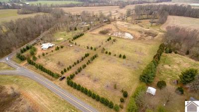 Ballard County Residential Lots & Land For Sale: 8963 Slater Road