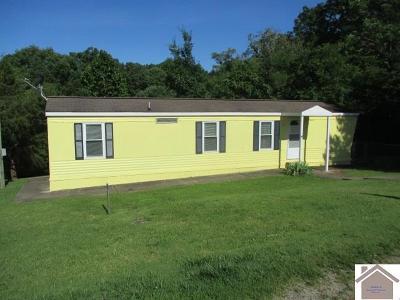 Cadiz Manufactured Home For Sale: 1109 Gresham Rd