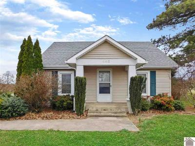 Murray Single Family Home For Sale: 445 Rayburn