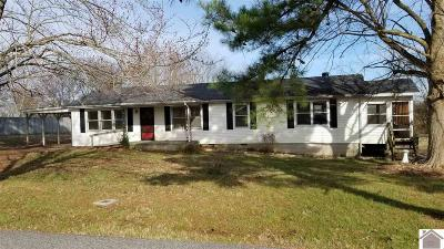 Marshall County Single Family Home For Sale: 24 Edwards Lane