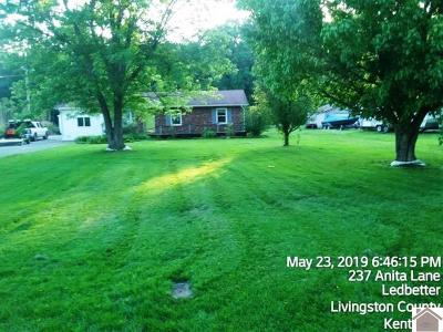 Single Family Home For Sale: 312 Anita Lane