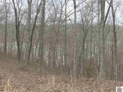 Calloway County Residential Lots & Land For Sale: Lot #33 Pier Lane