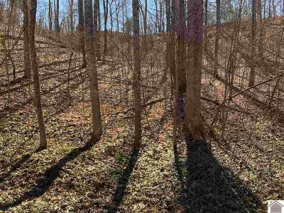 Calloway County Residential Lots & Land For Sale: Bowrider Drive