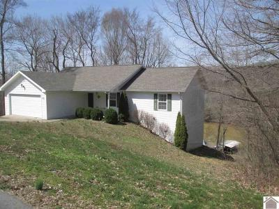 Lyon County, Trigg County Single Family Home For Sale: 361 Pollard Circle