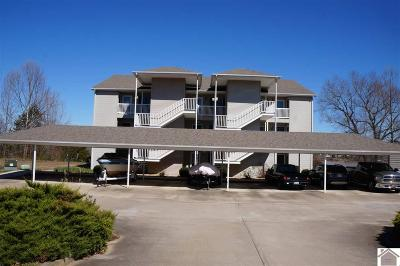 Calloway County Condo/Townhouse For Sale: 88 Deer Lake Lane Unit B-4