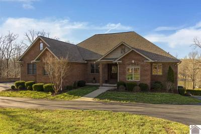 Marshall County Single Family Home For Sale: 239 Estates Drive