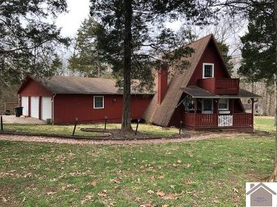 Marshall County Single Family Home For Sale: 400 Green Acres