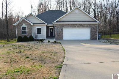 McCracken County Single Family Home For Sale: 8315 Danube Drive