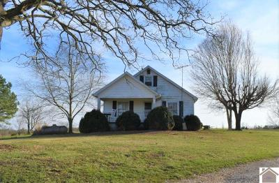 Graves County Single Family Home For Sale: 491 Seay Graves Rd