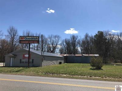 Marshall County Commercial For Sale: 4913 Gilbertsville Hwy.