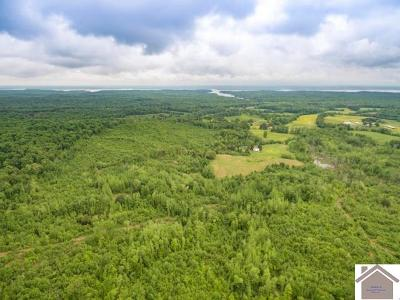 Calloway County Farm For Sale: Billie Branch Road