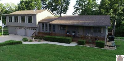 Calloway County, Marshall County Single Family Home For Sale: 28 Paradise Point