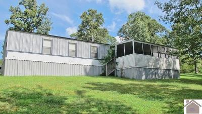 Kuttawa Manufactured Home For Sale: 150 Robertson Rd