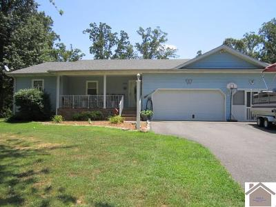 Calloway County, Marshall County Single Family Home For Sale: 248 Vista