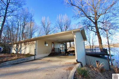 Cadiz, Trigg County, Eddyville, Kuttawa, Grand Rivers Single Family Home For Sale: 712 Lisanby