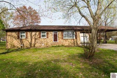 Livingston County Single Family Home For Sale: 405 Rudd Spees Road