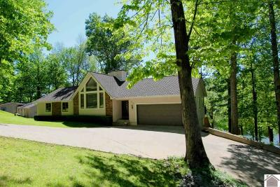 Cadiz, Grand Rivers, Trigg County, Eddyville, Kuttawa Single Family Home For Sale: 710 Barrett Rd