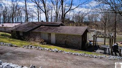 Trigg County Single Family Home For Sale: 506 Horseshoe Drive