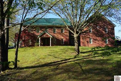 Caldwell County, Calloway County, Livingston County, Marshall County, Trigg County Single Family Home For Sale: 89 Cemetery Hill Lane