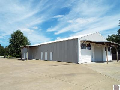 Marshall County Commercial For Sale: 1448 Briensburg Rd
