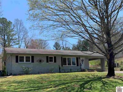 Murray Single Family Home For Sale: 12369 E State Route 94