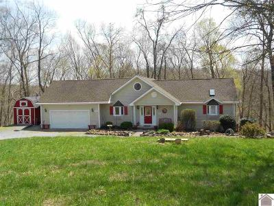 Cadiz, Trigg County, Eddyville, Kuttawa, Grand Rivers Single Family Home For Sale: 913 Woodfield Estates Drive