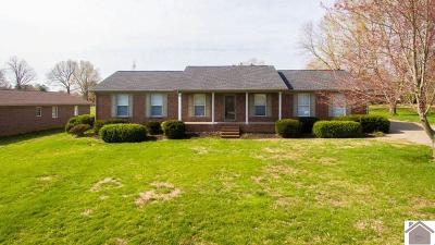 Paducah Single Family Home For Sale: 334 Wilton Circle