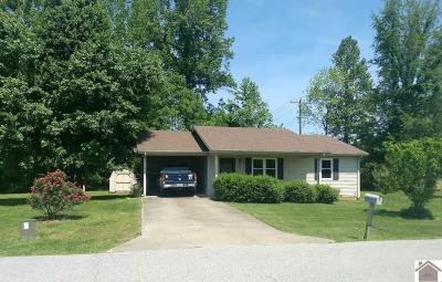 Eddyville Single Family Home For Sale: 22 Pebble Creek