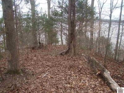 Residential Lots & Land For Sale: 285 Beaver Pond Road