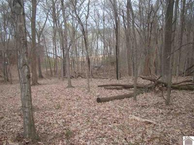 Residential Lots & Land For Sale: 75 Cherokee Drive