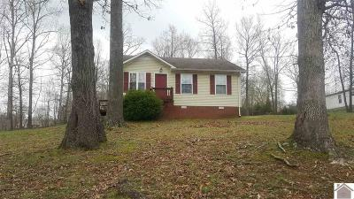 Trigg County Single Family Home For Sale: 40 Linda Lane